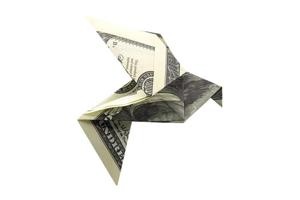Home Services - Dollar Bird Origami
