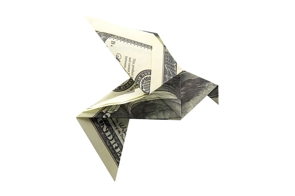 Home Services - Dollar Bird Origami